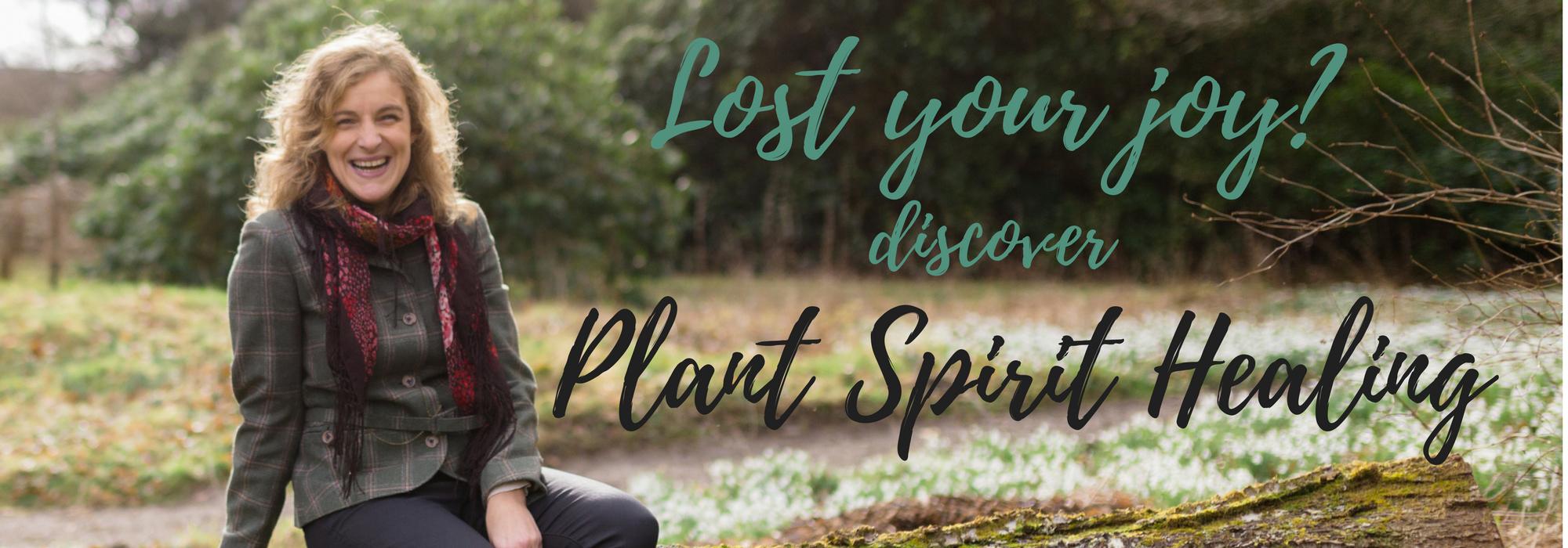 Plant Spirit Healing Scotland