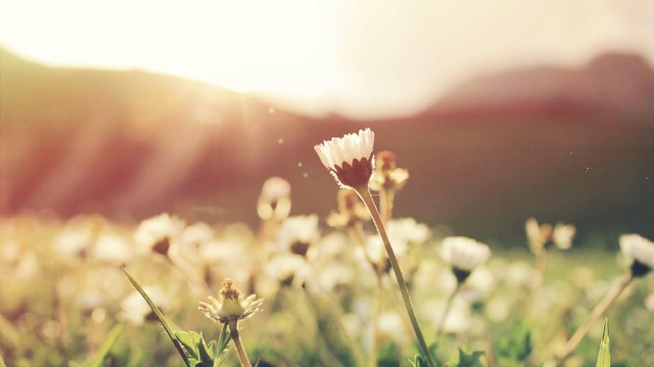 Time for a spiritual spring clean