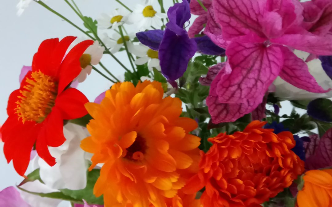 Need sanctuary? Get growing flowers and herbs