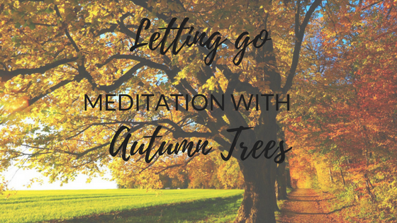 Meditation with Autumn Trees