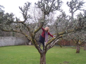 Apple tree healing fay johnstone