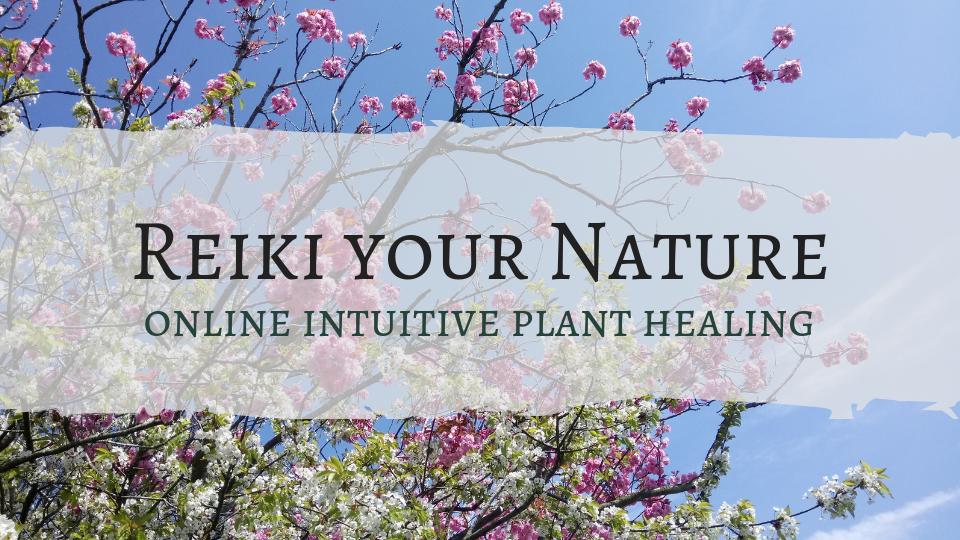 Reki your nature online course