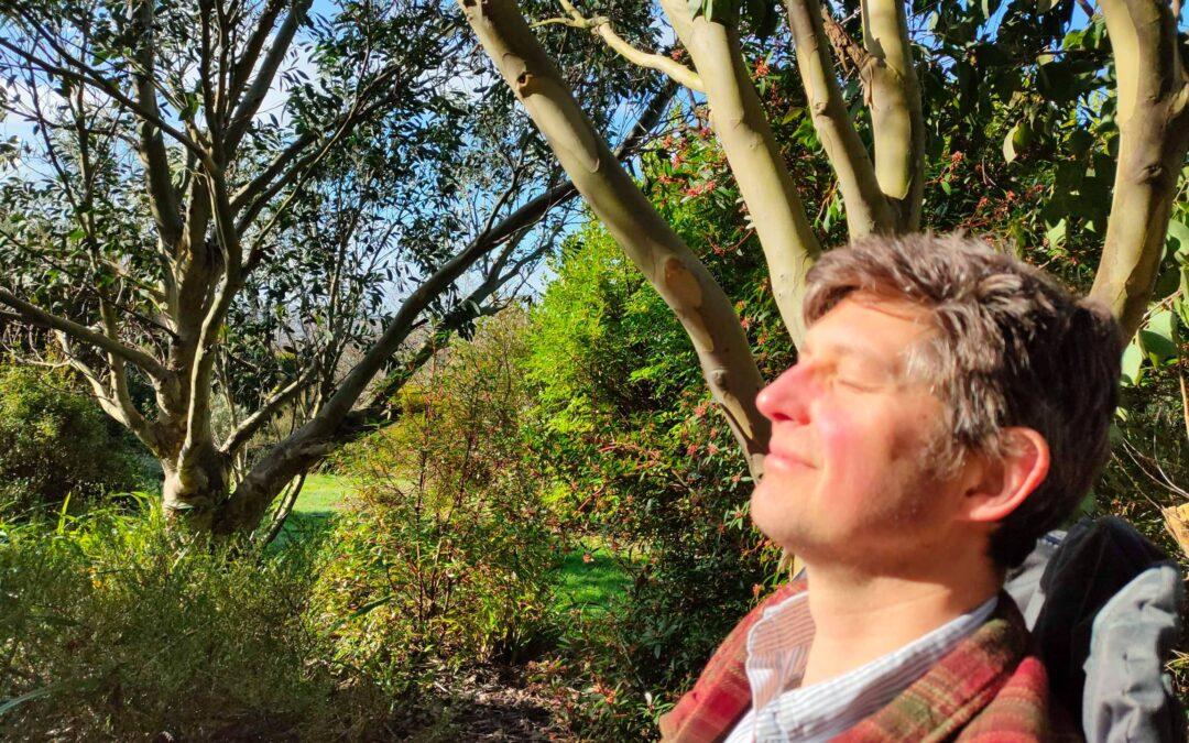Garden mindfulness