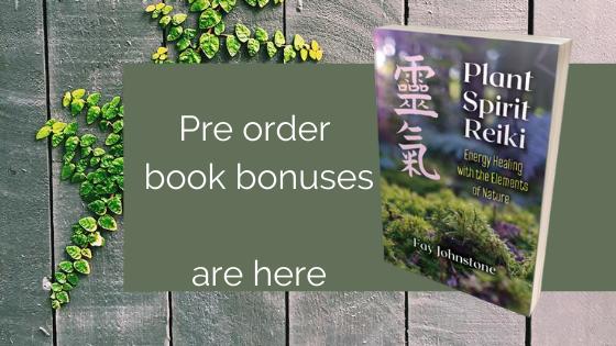 Preorder book bonuses