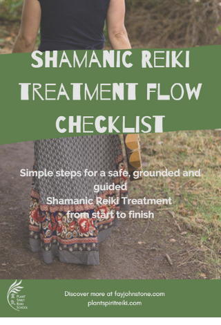 Shamanic Reiki Treatment checklist