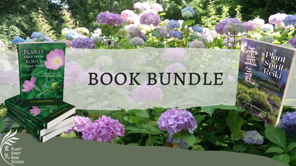 Book Bundle gift voucher