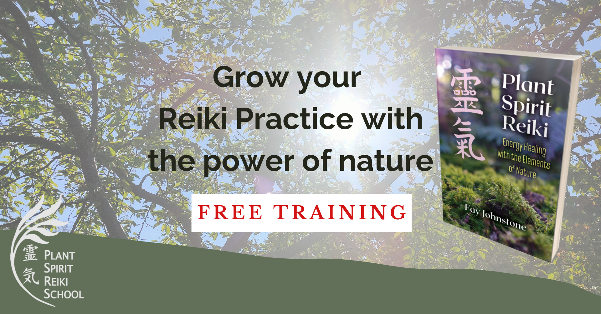 grow your reiki practice free training