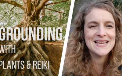 Five Ways to get grounded with Plants and Reiki